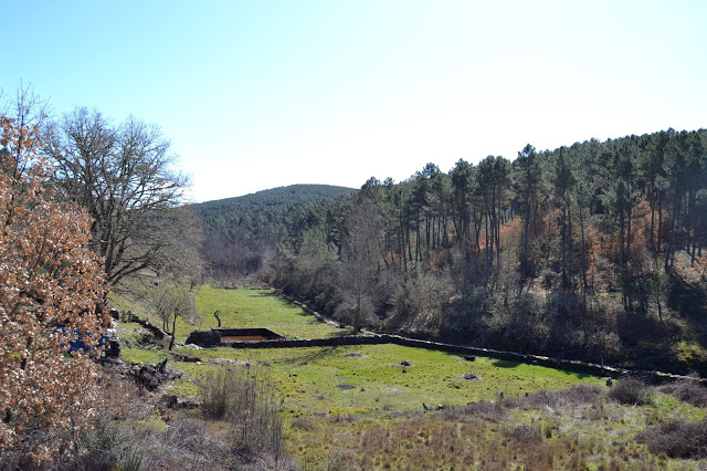 Praderas y bosques perfectamente conservados